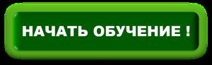 кнопка для подписной страницы1